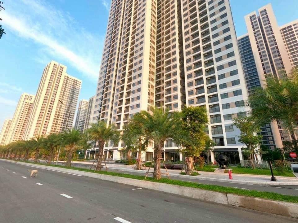 Cho thuê căn hộ vinhomes grand park cao cấp