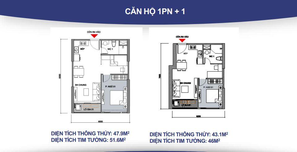 cho thuê Căn hộ 1 phòng ngủ 1wc tầng 10 toà S2.03